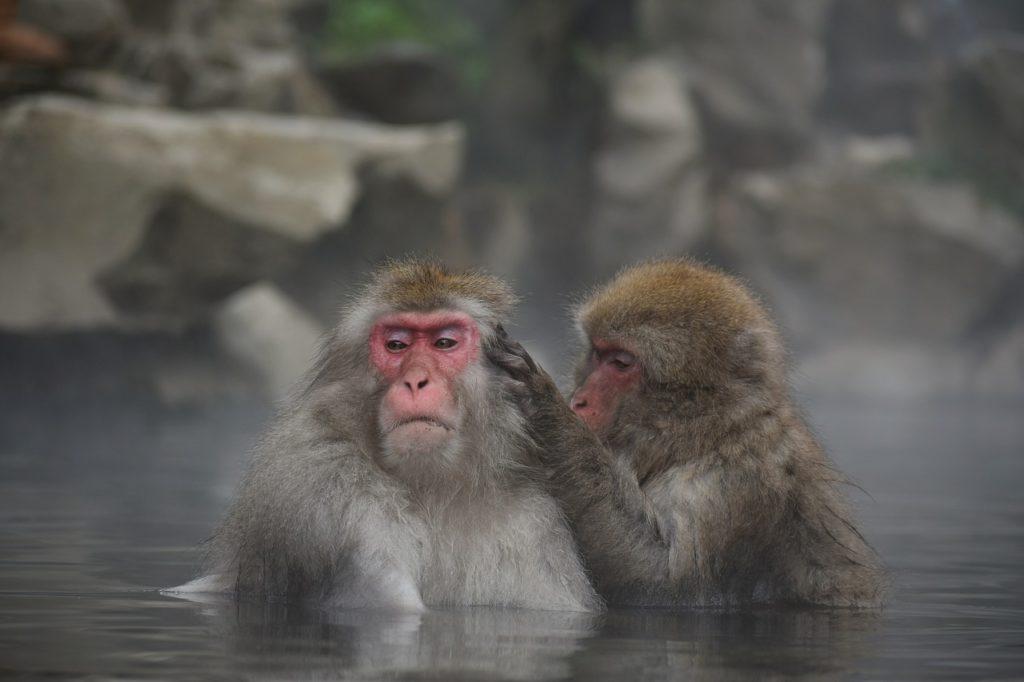 お風呂・温泉で疲労回復